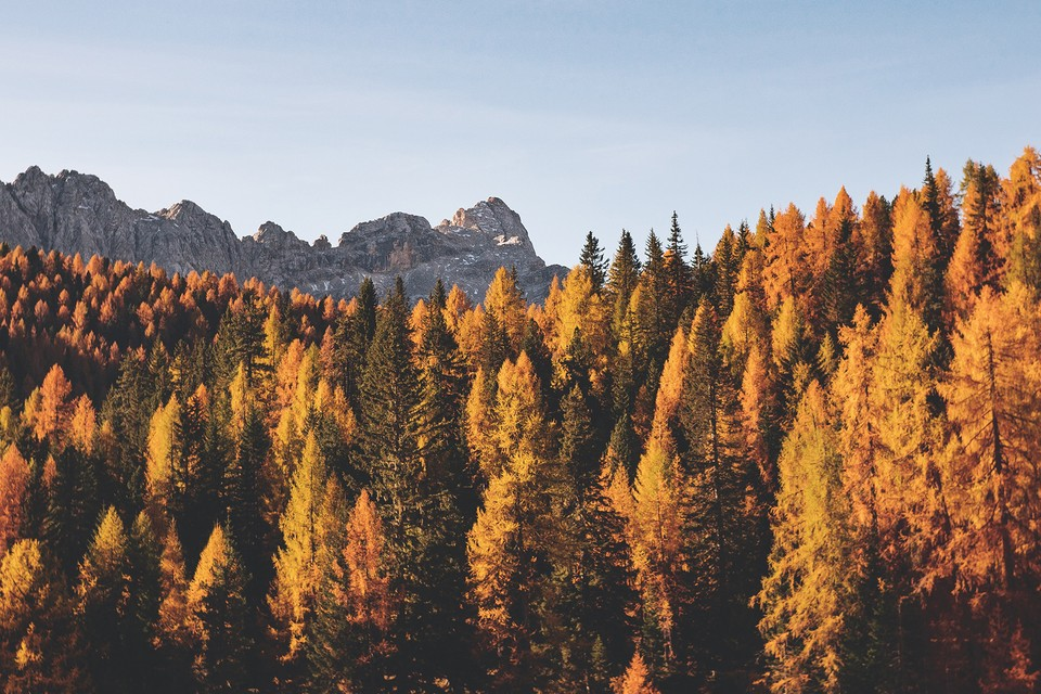 These Are the 10 Best Fall Foliage Trips to Take in the U.S.