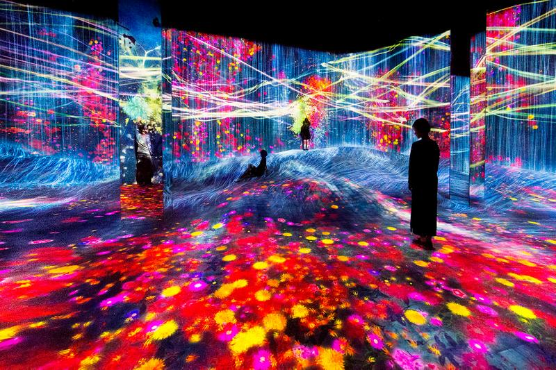 teamLab Borderless Shanghai Water Particles on a Rock Forest of Flowers
