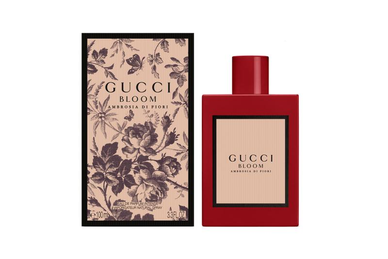 Gucci Bloom Ambrosia di Fiori Perfume Fragrance