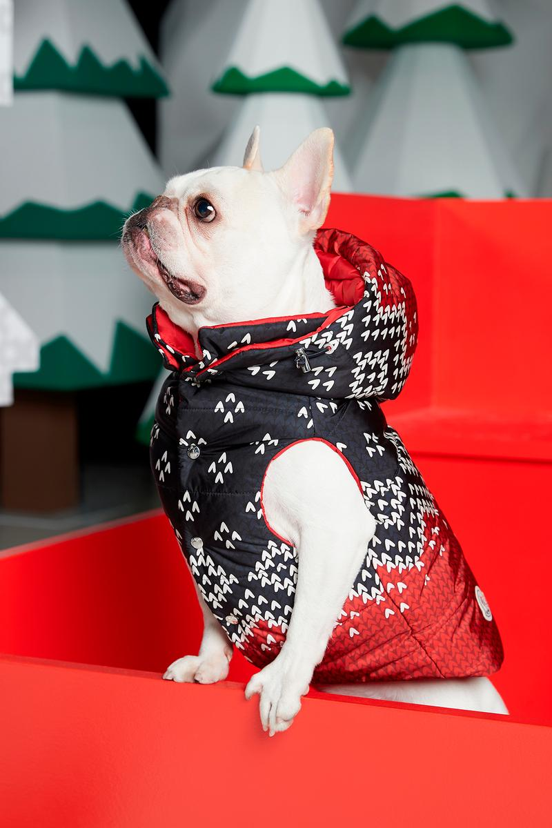 Poldo Dog Couture x Moncler Collection Lookbook Mondog Puffer Coat Red