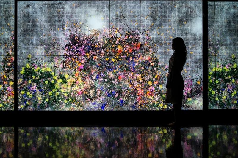 teamLab Singapore #futuretogether Continuous Life and Death at the Now of Eternity II