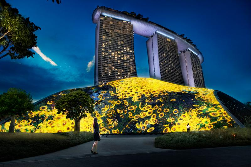 teamLab Singapore #futuretogether Flowers and People - Giant Lattice Mass