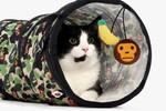 Picture of BAPE's Latest Baby Milo Pet Collection Is Made Just for Cats
