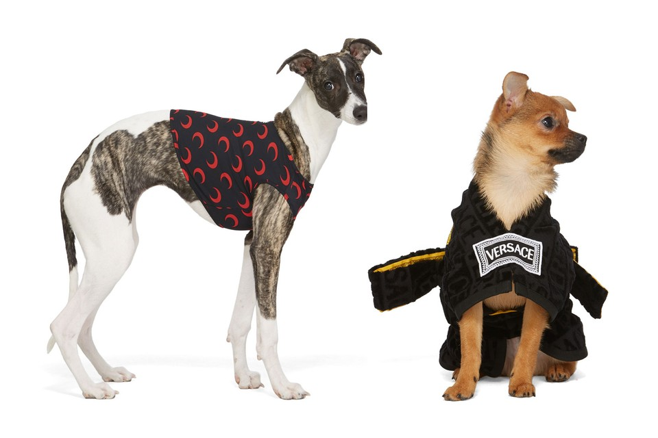 SSENSE Launches Collection of Luxe Dog Clothing by Marine Serre, Versace and More