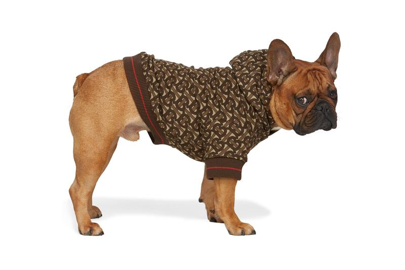 SSENSE Dog Clothing Burberry Monogram Hoodie Brown