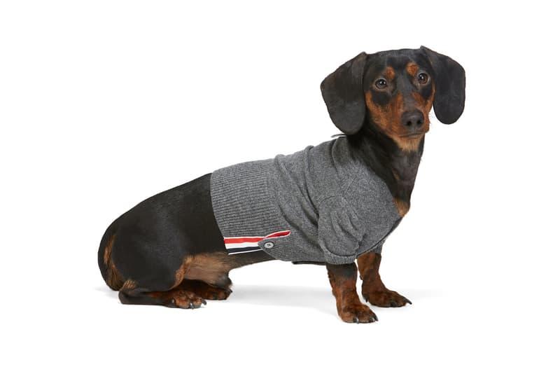 SSENSE Dog Clothing Thom Browne Sweater 4-Bar Rib Knit Grey