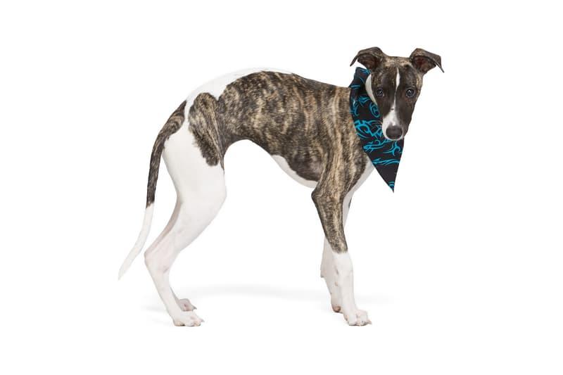 SSENSE Dog Clothing MISBVH Bandana Monogram