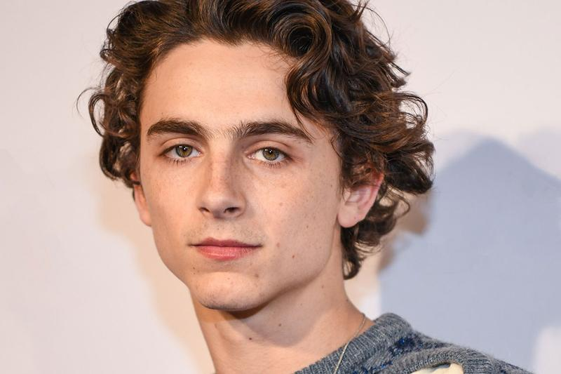 Timothee Chalamet Red Carpet Style