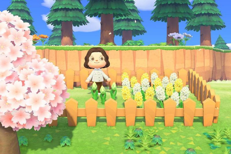 Animal Crossing New Horizons Flower Garden Island Character