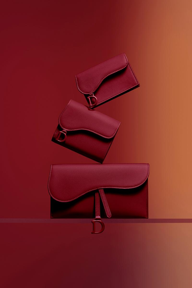 Dior Ultra-Matte Collection Bags Saddle Wallet Red