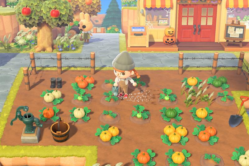 Animal Crossing New Horizons Halloween Fall Update Pumpkin Grow Island