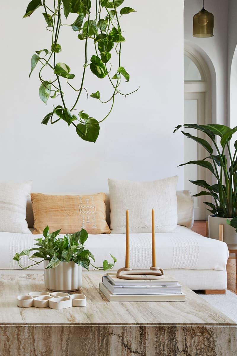 home interior design houseplants hanging trailing