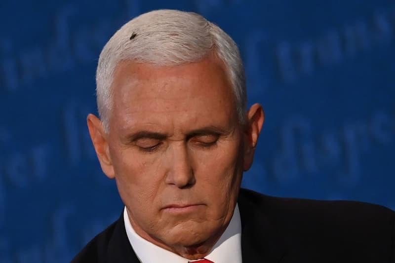 Mike Pence Fly Head Vice Presidential Debate