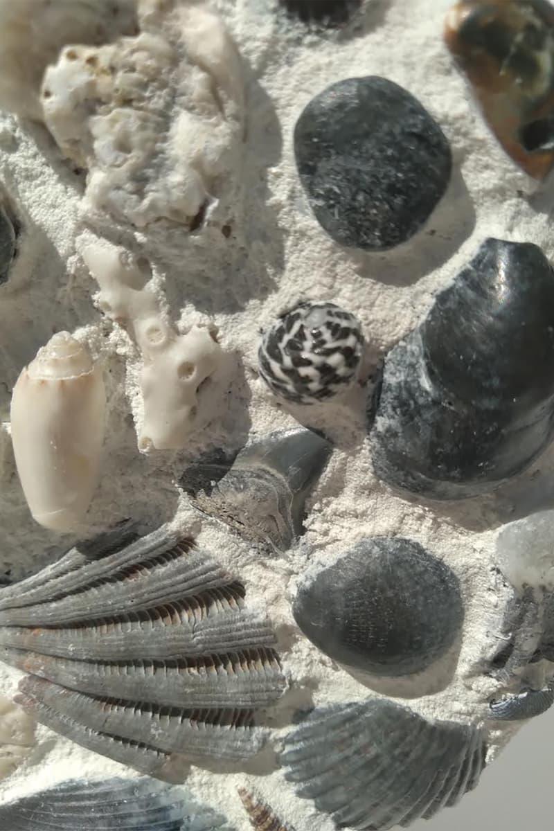 reaper goods seashell vases homeware decor