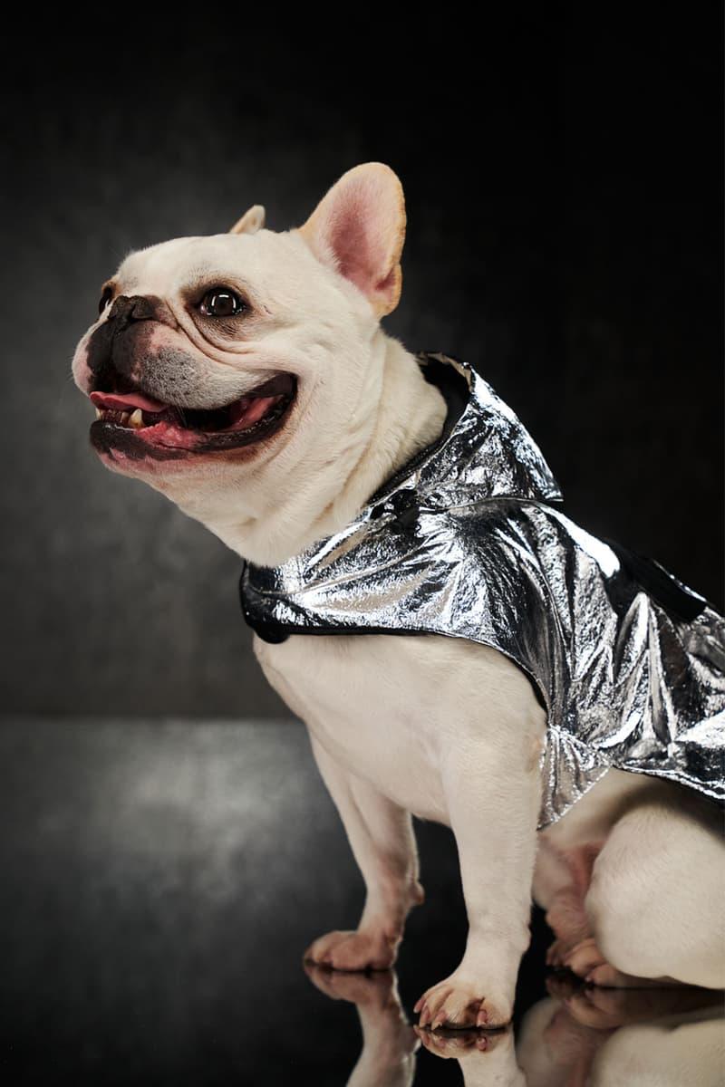 moncler genius poldo dog couture pets mondog puffer vests cloaks collars leash price