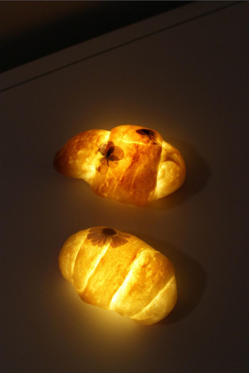dauphinette pampshade ss21 spring summer bread led lamps floral