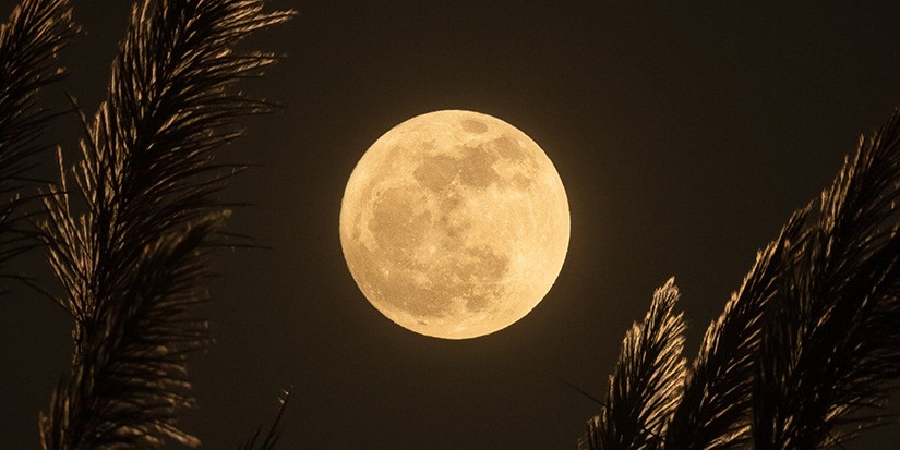 Here's How the September Full Harvest Moon Affects Your Zodiac Sign