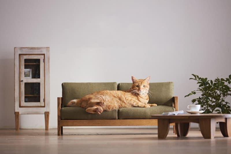 """福岡県の誇る大川家具から""""ネコ家具""""が登場 okawa city okawa furniture okawa kagu design cats pets 家具 ペット"""