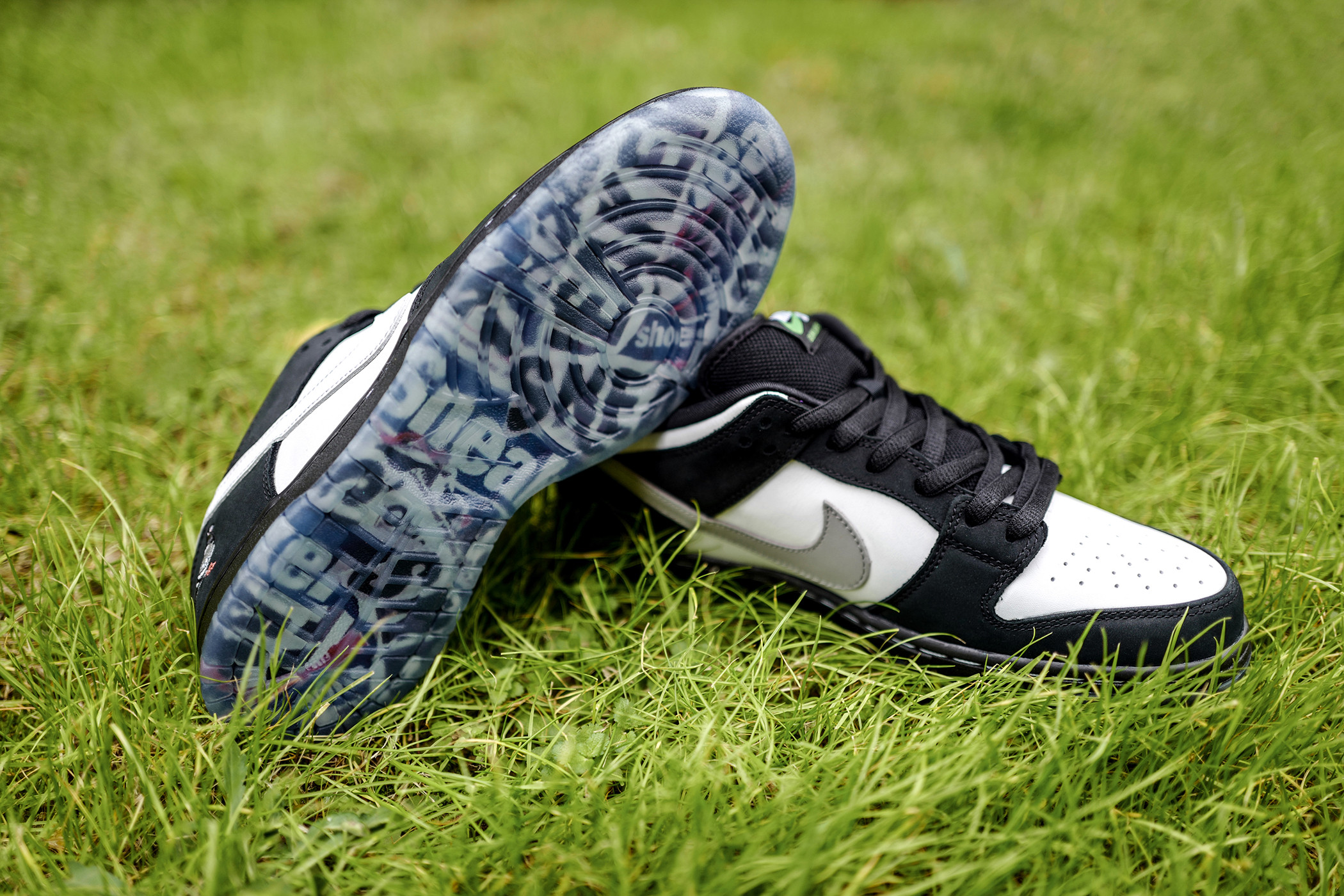 "Nike SB×Stapleによる新作Dunk ""Panda"