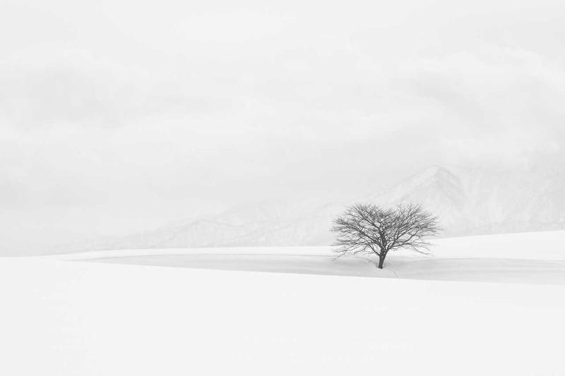 写真コンテスト international landscape photographer of the year 2019 winners