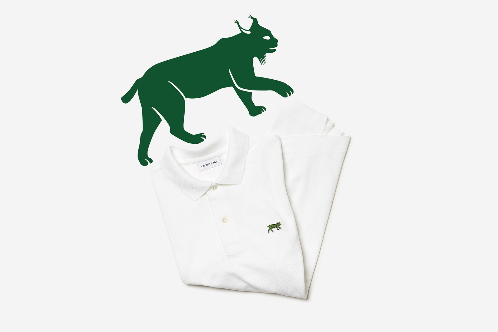 LACOSTE ラコステ ワニ ロゴ 世界各地 絶滅危惧種 限定 ポロシャツ 発売情報 解禁 日本 ウォンバット ギンザ