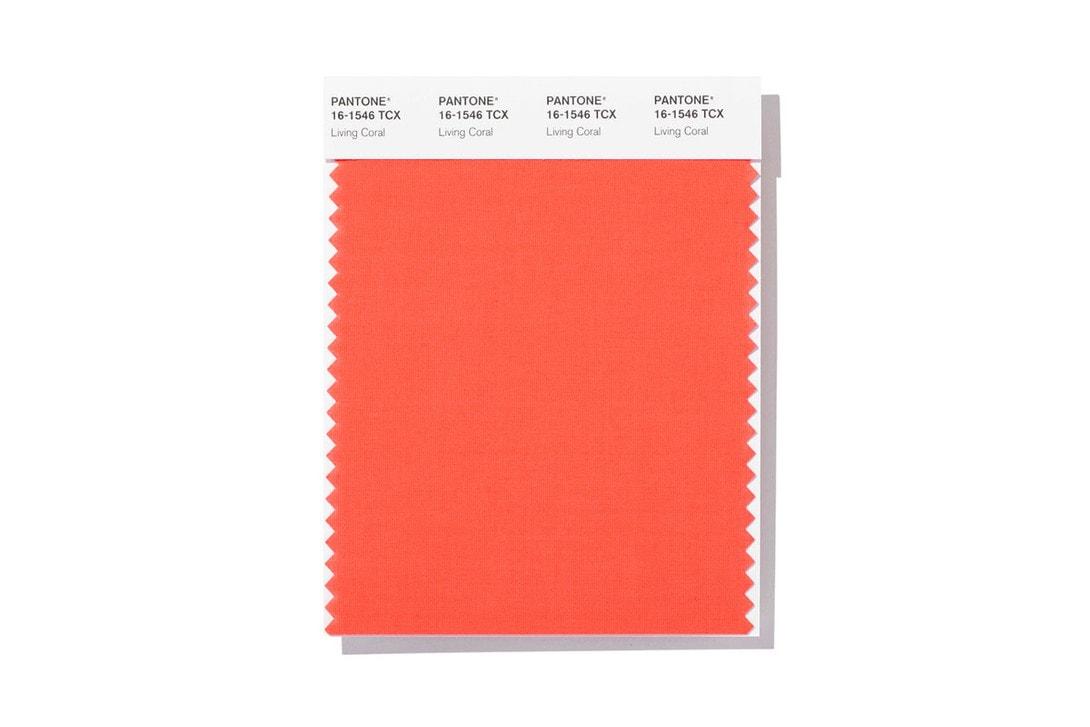2019년 팬톤 올해의 컬러 올해의 색 리빙 코랄 living coral color of the year