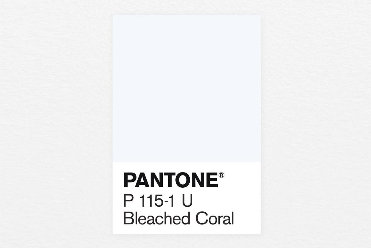 죽어가는 산호초 문제 간과? 비난받는 2019 팬톤 올해의 컬러 '리빙 코랄' 블리치드 코랄 living coral bleached coral