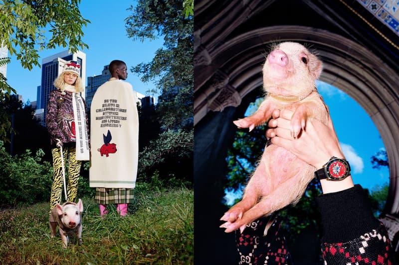 2019년 돼지의 해 기념하는 구찌 Pigs might fly 컬렉션 십이지