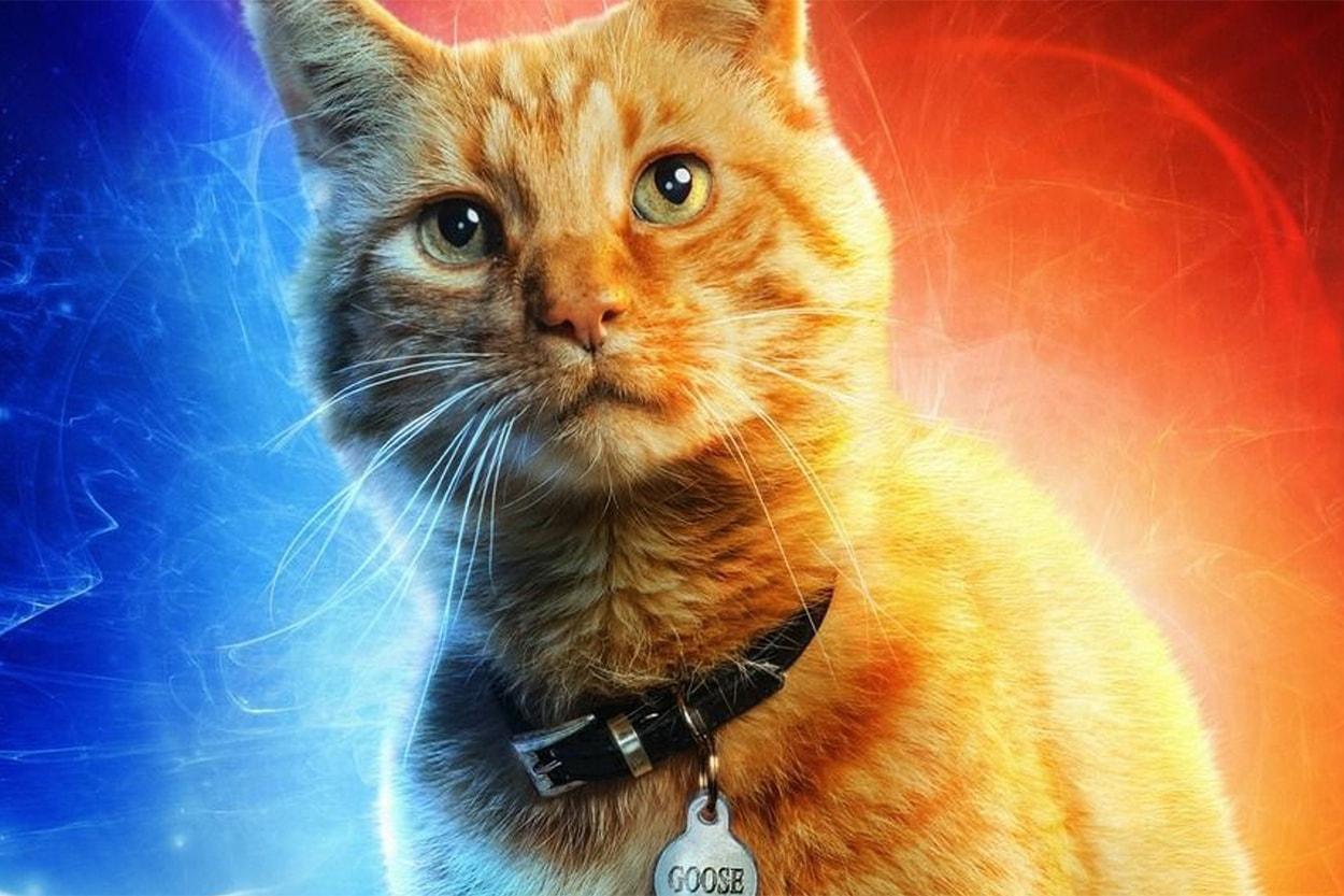 스포일러 주의, '캡틴 마블'의 쿠키영상 내용 요약 닉 퓨리 고양이 구스