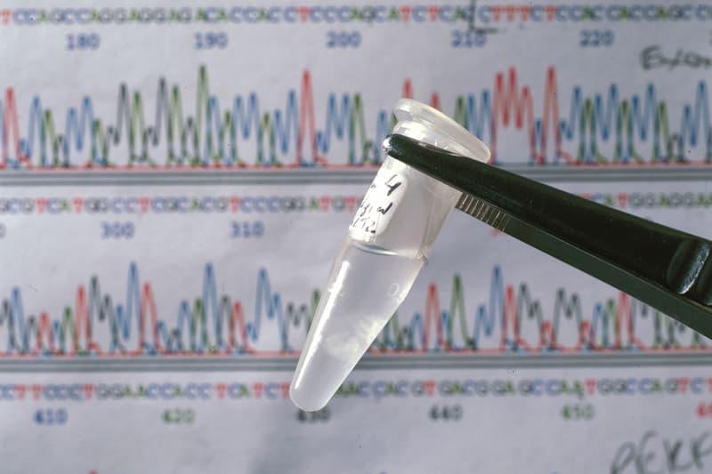 유전자가 비슷한 사람들끼리 교류하는 새로운 SNS가 출시된다, DNA, 유전적 관계망 서비스, 이원다이애그노믹스