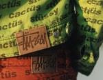 캑터스 플랜트 플리 마켓 x 스투시 의류 컬렉션 출시 정보